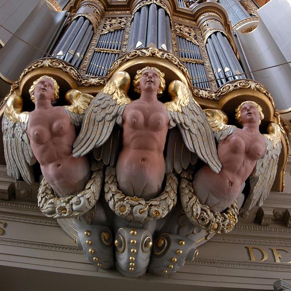 orgel grote sint laurenskerk alkmaar